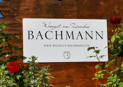 4. Oktober Frühschoppenkonzert Weingut Bachmann Stäfa
